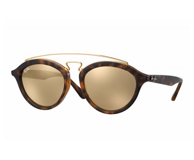 Óculos de Sol Ray Ban Gatsby Oval RB 4257 60925A 53